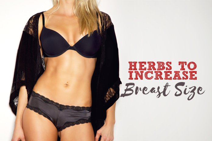 Herbs-to-Increase-Breast-Size-